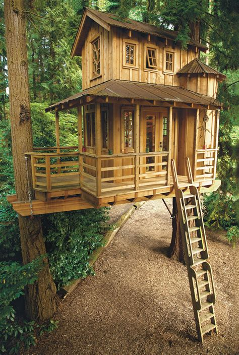 treehouse for backyard best 25 treehouse ideas ideas on backyard treehouse treehouse and tree house
