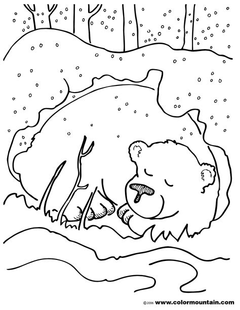 coloring page of a brown bear brown bear coloring page create a printout or activity
