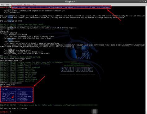 web testing tutorial hacking tutorial pentesting web applications designs to