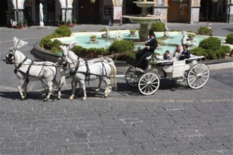 Carrozze Per Cavalli Prezzi Noleggio Carrozza Matrimonio Cania Noleggio Carrozza