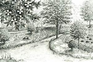 Drawing Of Garden garden drawing related keywords amp suggestions garden