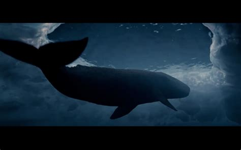 The Miracle Whales The Locations Of Alaska S Big Miracle Locationshub