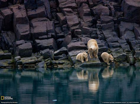 Natgeo Lis best photos 2 breathtaking national geographic
