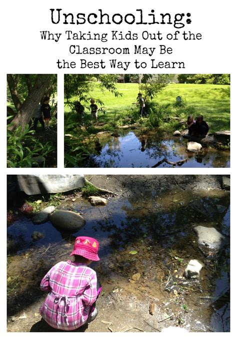 unschooling works using self directed learning to homeschool our children books unschooling why taking out of the classroom may be