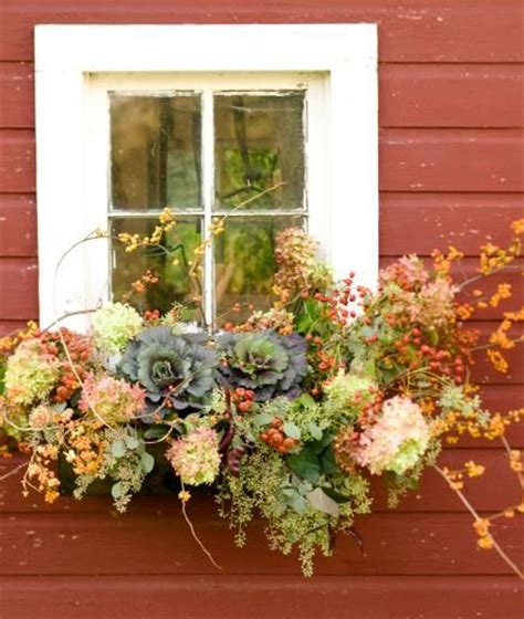 Fall Planter Box Ideas by Best 25 Fall Window Boxes Ideas On Fall