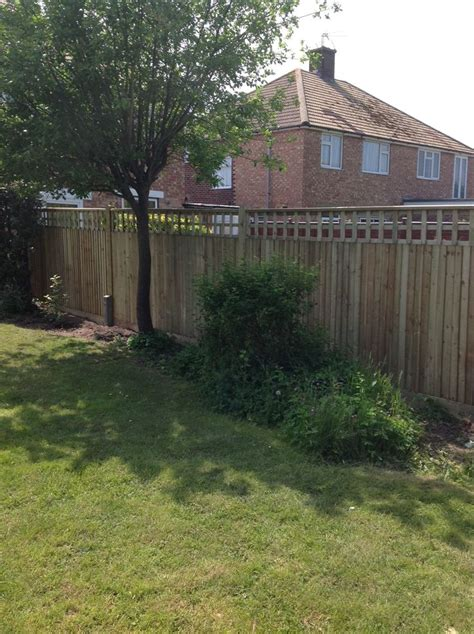 Fencing And Trellis Closeboard Fence And Trellis Fencing Etc