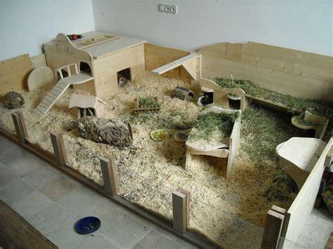 meerschweinchen stall bauen meerschweinchen haus bauen ihre inspiration zu hause
