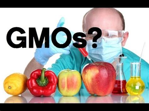 are gmos bad for your health if you re asking this question you re probably missing the point why gmos are bad for you