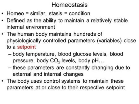 Homeostasis Mba by Ch 6 Communication Integration Homeostasis Ppt
