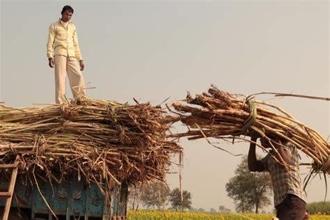 indian sugar   high spirits