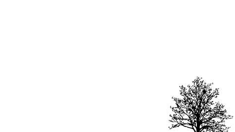Best Wps220 White N Green Dot Flower Wallpaper Dinding Walpaper simple background pictures wallpapersafari