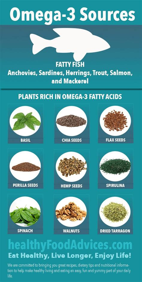 healthy fats dietitian 73 best fatty acids omega 3 epa dha images on