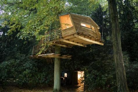 coolest treehouses 15 cool treehouse designs shelterness