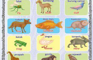 Mengenal Lingkungan Dan Hewan 3 Bahasa Seri Kamus Bergambar manfaat dan pentingnya dongeng untuk anak anak ebook anak