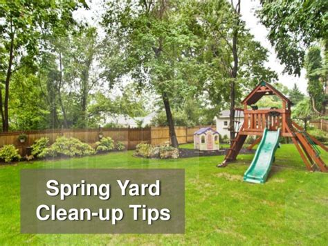 backyard cleanup spring yard clean up tips