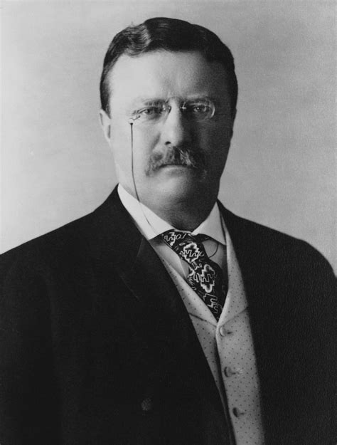 presidency of theodore roosevelt wikipedia