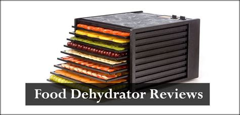 best food reviews best food dehydrator reviews why do i need a food dehydrator