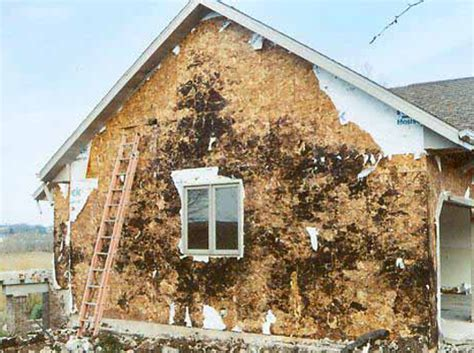 painting osb for exterior use 6 3 16
