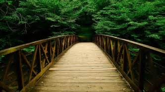 pathway pictures most beautiful wooden pathway wallpaper full hd pictures