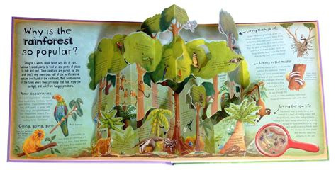 pop for toddlers pop up books make environmental science easy peasy for