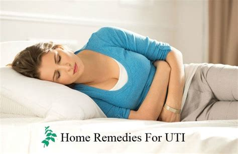 home remedies for uti urinary tract infection remediesguru