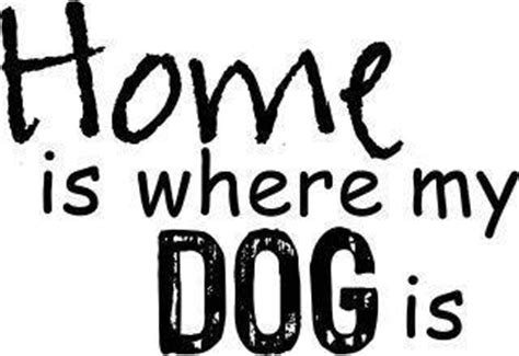 where my dogs at quotes pictures and quotes images 174
