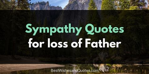 comforting words for loss of a father these sympathy quotes for the loss of a father will bring