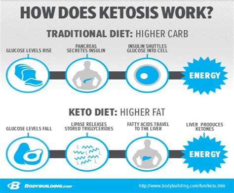 ketogenic diet beginners guide to keto lifestyle with 70 easy fast delicious recipes automatically reduce hunger burn excess make healthier and naturally lower your blood sugar books keto diet plan for beginners step by step guide keto size me