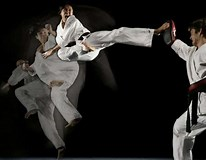 Image result for Deadliest Martial Arts Styles