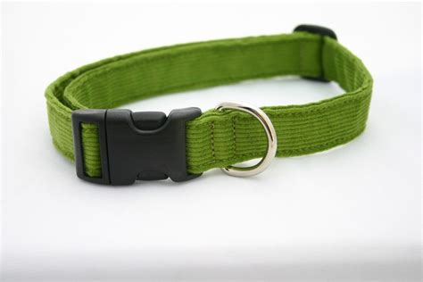 comfortable collars related keywords suggestions for most comfortable collars