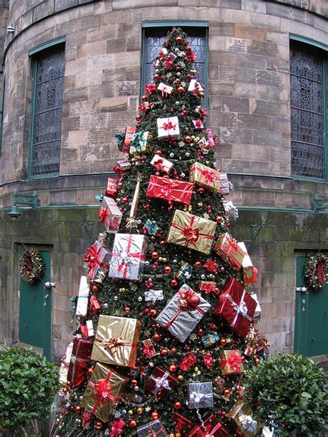 christmas tree in scotland christmas pinterest