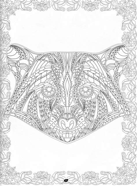 images  coloring blank pages  pinterest amy