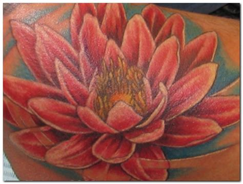 lotus flower tattoo japanese meaning lotus flower tattoo design images beauty style