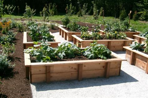 Vegetable Garden Ideas Designs Raised Gardens Why You Should Raised Veggie Beds Sustainable Living