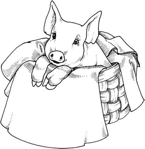 free anime pig coloring pages