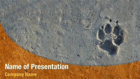 paw print powerpoint template animal foot print powerpoint templates animal foot print