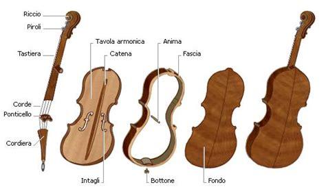 tavola armonica violino musica parti famiglia violino della musica