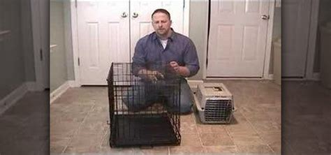 how to stop from barking in crate how to stop your from barking in the crate 171 dogs