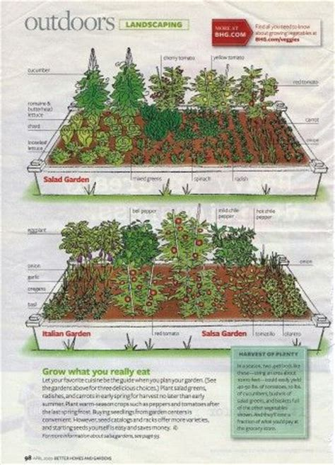 Salsa Garden Layout Salad Garden Layout The Layout Of The Salad Garden