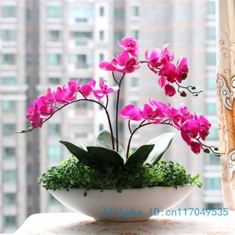 shop popular succulent plant pot from china aliexpress 25 best ideas about artificial orchids on pinterest