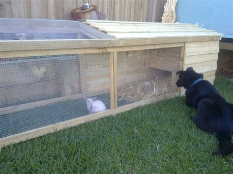 plans to build free plans to build a rabbit hutch woodworking projects