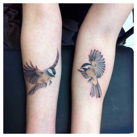 25 best ideas about chickadee on