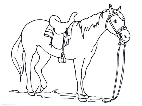 horse coloring pages preschool 42 horse coloring pages print color craft horse coloring