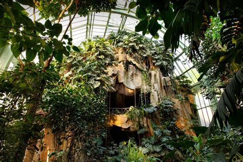 serre jardin des plantes grandes serres du jardin des plantes mus 233 um national d