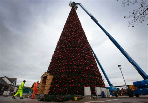 in pictures europe s biggest walk in christmas tree to be