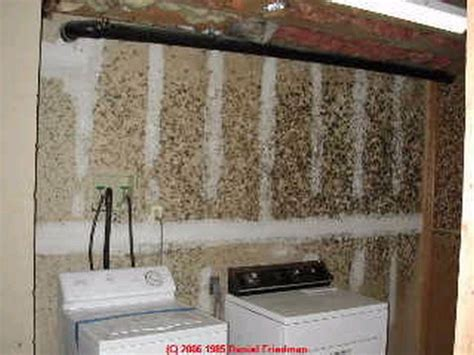 what does mold look like in a basement mold and human health broomecountyny