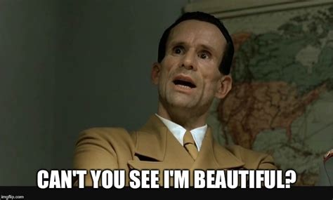 Downfall Meme - image tagged in memes hitler downfall beauty handsome
