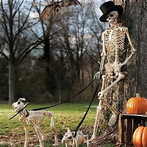 halloween themes with dogs halloween decorations i want and the o jays on pinterest