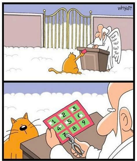 Cartoon Cat Memes - funny heaven memes