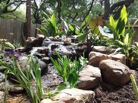 backyard austin tx backyard landscaping austin tx specs price release date redesign